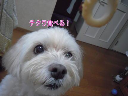 image138_20090721213934.jpg