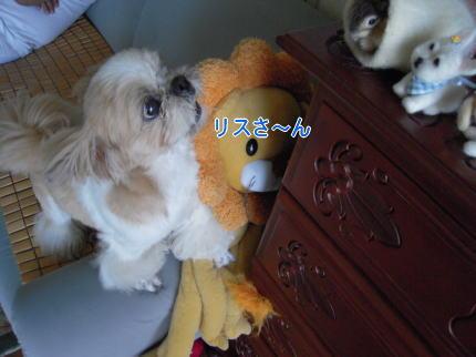 image224_20090808213000.jpg