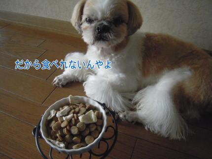 image79.jpg