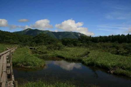 沼ッ原湿原の夏