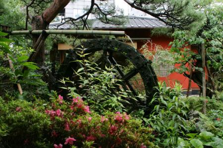 とうふ屋うかいの庭園