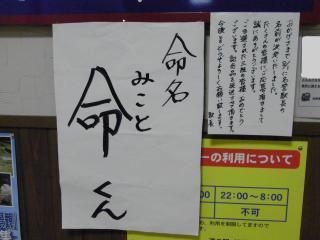 snap_hanatose_200980223459.jpg