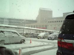 2008-01-09 雪