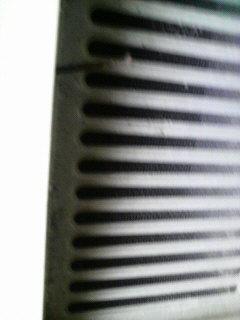P1000461.jpg