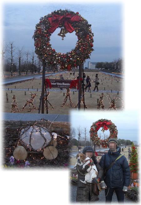 昭和記念公園。