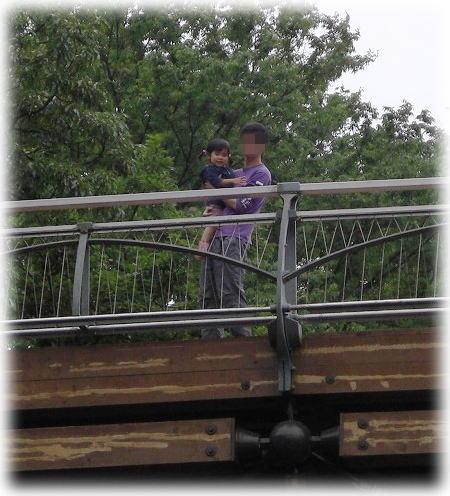 橋の上から。