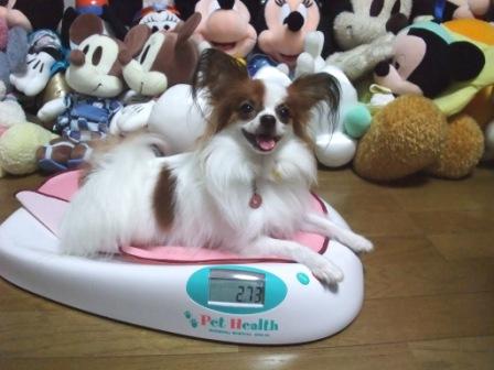 体重は2・7キロ