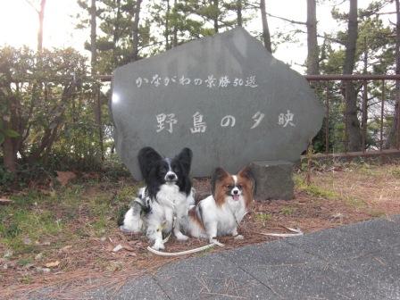 コピー ~ 野島山頂上にて