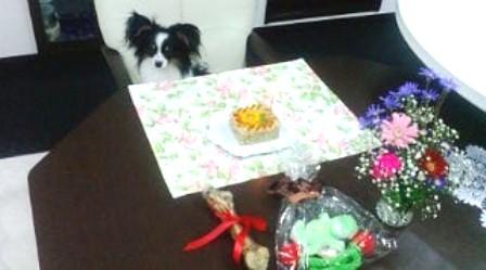 コピー ~ 誕生日ケーキ早く食べたいよ