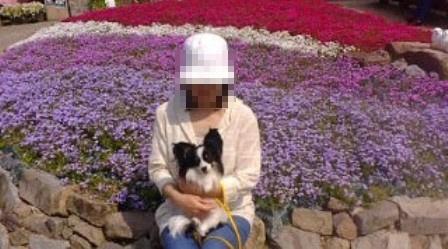 090510花のじゅうたんc