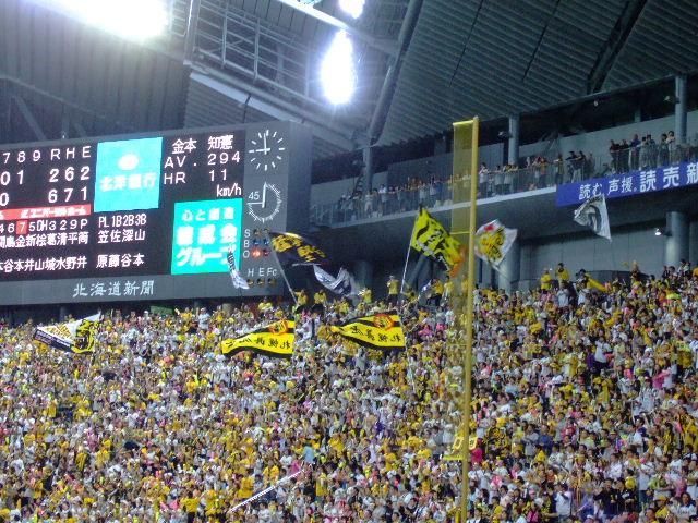 2009_0602阪神戦0049