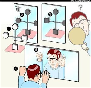鏡の中では左右だけ逆転?