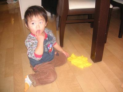 01177yukafuki2.jpg