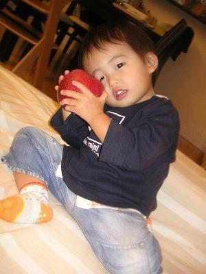 12086_apple2.jpg