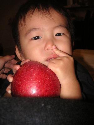 12086_apple3.jpg
