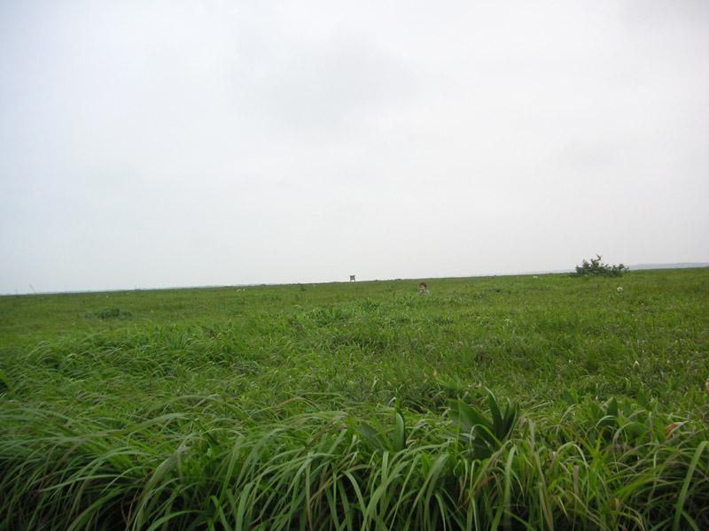 2006hokkaido10.jpg