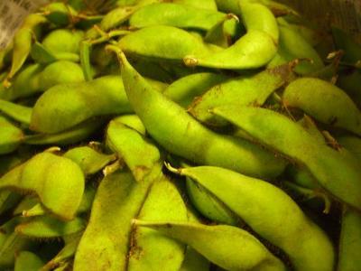黒豆の枝豆