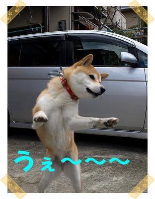 うぇ~~こじまよしお風!?