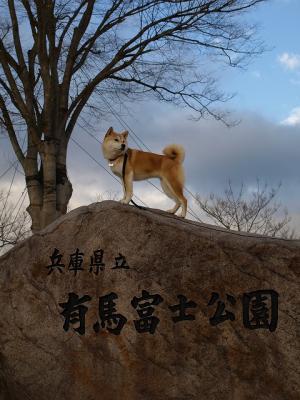 有馬富士公園に来ました!