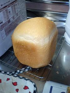 初食パン!
