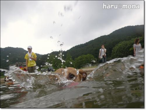 biwako20090801-102207.jpg