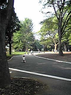 駒沢オリンピック公園_チリリンコース