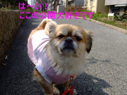 2008_02200189.jpg