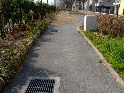 2008_02200190.jpg