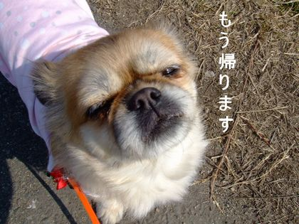 2008_02200202.jpg