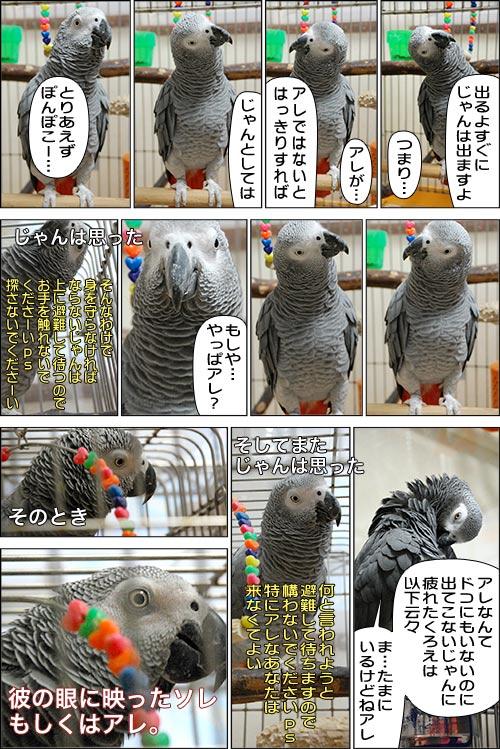 ノンフィクション劇場-No.05