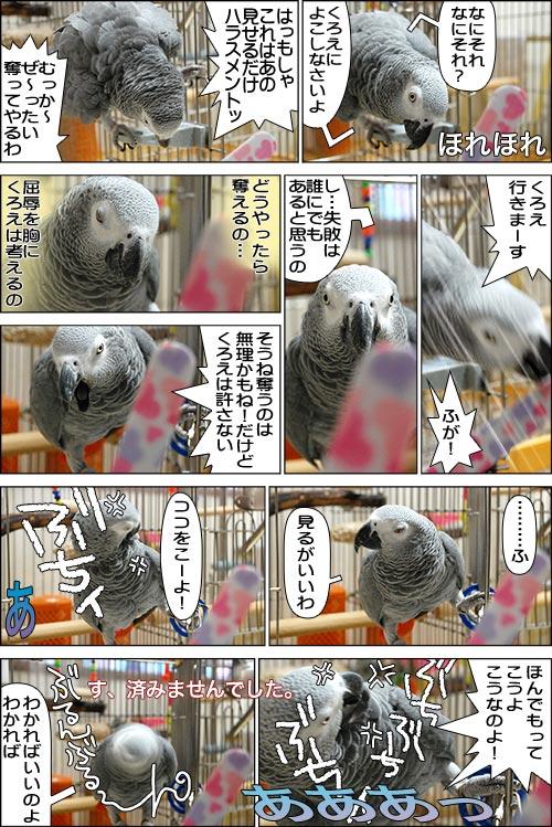 ノンフィクション劇場-No.06