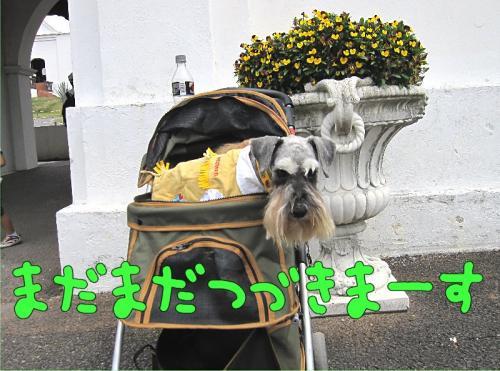 Img_4458a.jpg