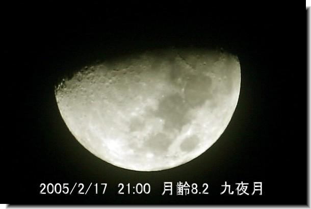 20050218075947.jpg