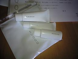 csm1.jpg
