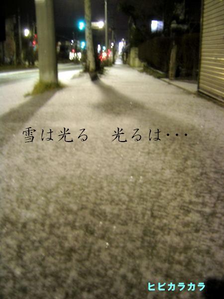 雪のカケラ