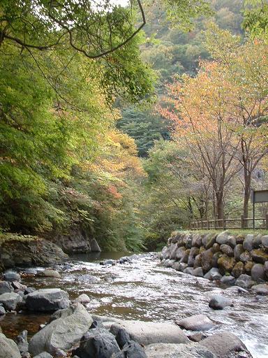 小中大滝2