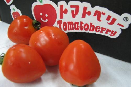 トマトベリー02