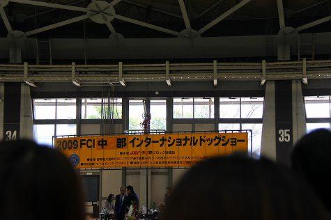 IMG_4641.jpg
