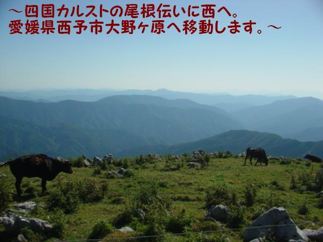 大野ヶ原へ