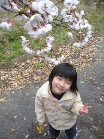 お花見(2009年3月28日)2