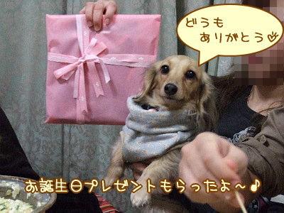 ひな誕生日プレゼント★