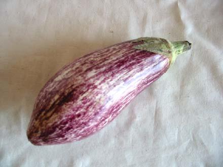 aubergineblanche.jpg
