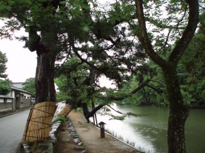 出雲松江23