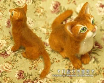 cat0902b.jpg