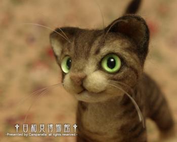 cat0903b.jpg