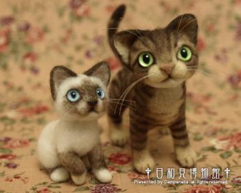 cat0904b.jpg