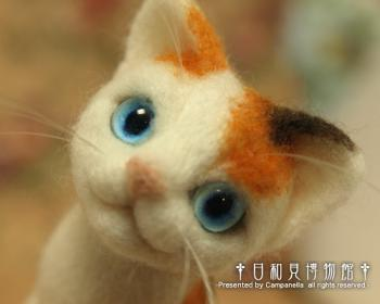 cat0906b.jpg
