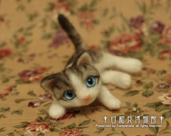 cat0909.jpg