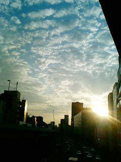 060829_yuuhi.jpg