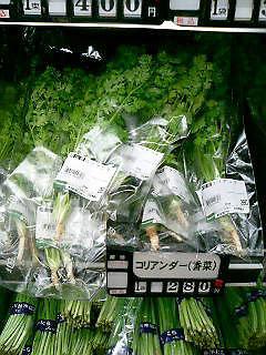 070830pakuchi.jpg